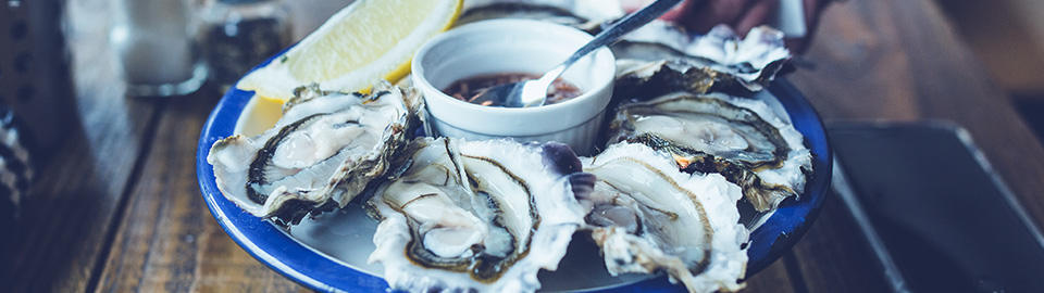 Sustainable Seafood Coalition